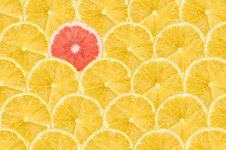 Foto de One Pink Grapefruit Slice Stand Out Of Yellow Lemon Slices - Imagen libre de derechos