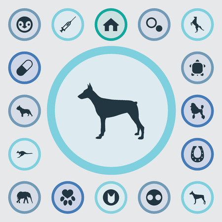 Ilustración de Vector Illustration Set Of Simple Fauna Icons. Elements Circle, Curly Puppy, Tortoise And Other Synonyms African, Dots And Pet. - Imagen libre de derechos