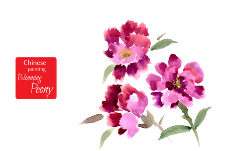 Illustration for Peony, painted in gouache. Stylized Chinese painting. Vector illustration - Royalty Free Image