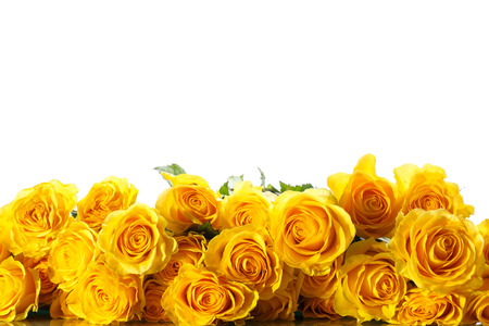 Foto de bouquet of beautiful roses on a white background - Imagen libre de derechos