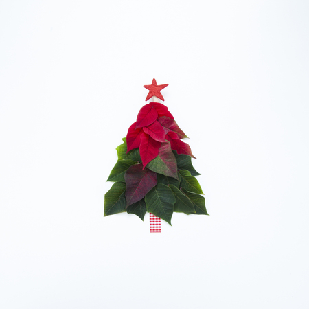 Photo for Creative Christmas tree made of poinsettia petals and leaves with red star on top on white background. - Royalty Free Image