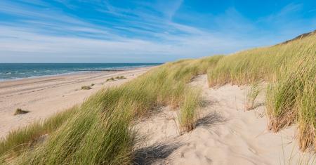 Foto de Sea dunes with ocean view - Imagen libre de derechos