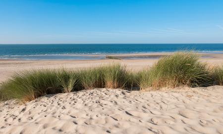 Foto de Coastline with dike, sand and grass in Zeeland, Holland - Imagen libre de derechos