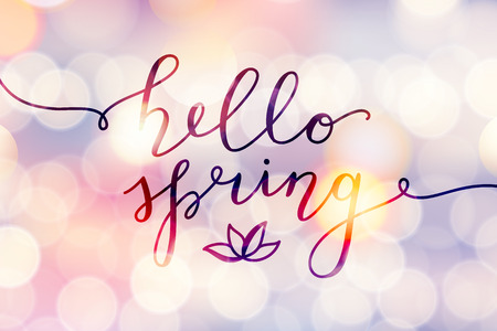 Illustration pour Hello spring, vector lettering and flower, spring card with handwritten text - image libre de droit