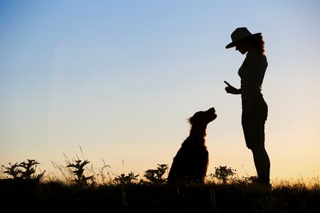Foto de Website banner silhouette of a female as training her dog - Imagen libre de derechos