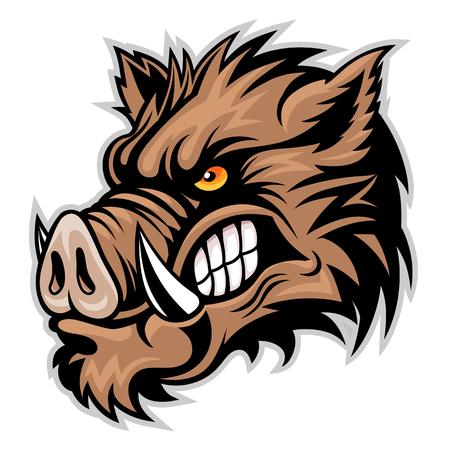 Illustration pour Wild boar head - image libre de droit
