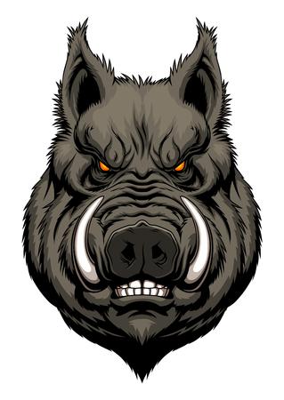 Illustration pour Angry boar head - image libre de droit
