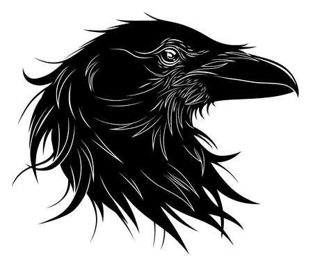 Illustration pour Black raven head, vector illustration. - image libre de droit