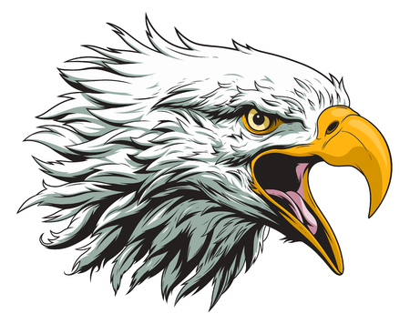 Illustration pour Bald eagle head - image libre de droit