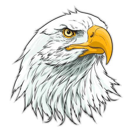 Illustration pour American eagle head - image libre de droit