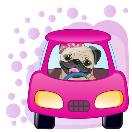 Illustration pour Cute Pug Dog girl is sitting in a car - image libre de droit