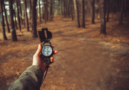 Photo for Hiker woman searching direction with a compass in the forest. View of hands. Point of view shot. Space for text in right left of image - Royalty Free Image