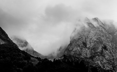 Photo for Foggy misty day in a mountain valley. - Royalty Free Image