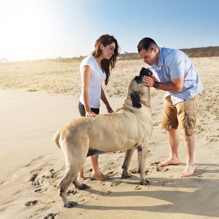 couple playing with pet dog