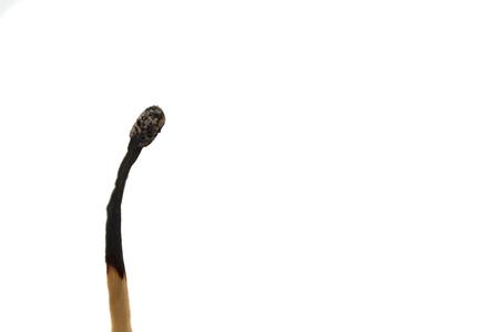 Foto de A burnt match against white background - Imagen libre de derechos