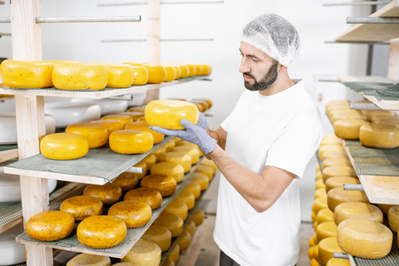 Photo pour Man checking the quality of the fresh cheese wheels after the waxing and salting process at the storage - image libre de droit