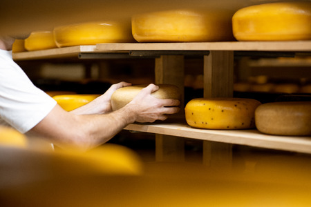 Photo pour Worker taking cheese wheel at the storage during the cheese aging process. Close-up view with no face - image libre de droit