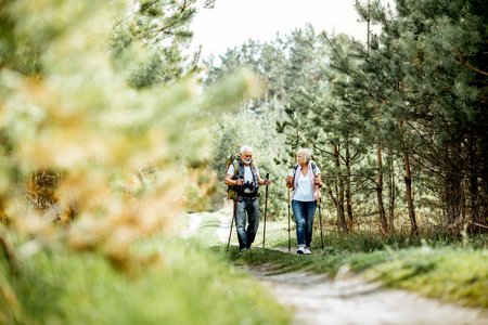 Photo pour Happy senior couple hiking with trekking sticks and backpacks at the young pine forest. Enjoying nature, having a good time on their retirement - image libre de droit