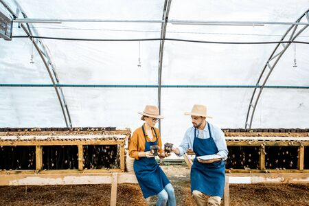 Foto de Two farmers examining snails growing process in the hothouse of the farm, wide angle view. Concept of farming snails for eating - Imagen libre de derechos