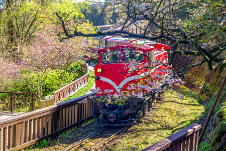 Photo pour railway in alishan forest recreation area in chiayi - image libre de droit