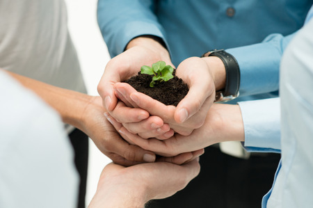 Photo pour Closeup Of Businesspeople Hand Holding Plant Together  - image libre de droit