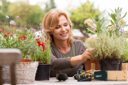 Foto de Portrait Of Happy Mature Arranging Potted Plants - Imagen libre de derechos