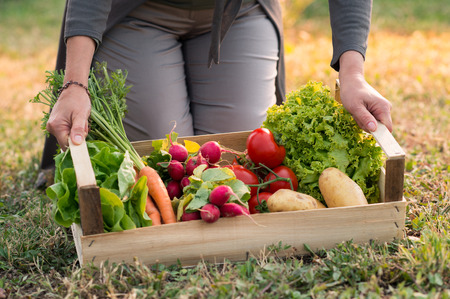 Photo pour Close up Of Woman Holding Crate With Vegetable - image libre de droit