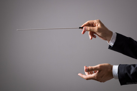 Foto de Musician director holding stick isolated on grey background. Close up of orchestra conductor hands holding baton. Music conducting director holding stick. - Imagen libre de derechos