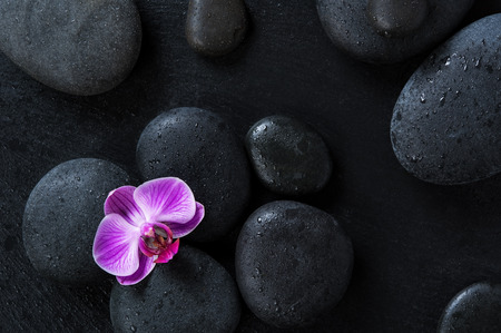 Foto de Top view of black massage stones on blackboard with single purple orchid. High angle view of pink orchid flower on wet hot stones therapy. Lastone treatment and luxury spa concept. - Imagen libre de derechos