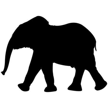 baby elephant silhouette isolated on white background, abstract art illustration
