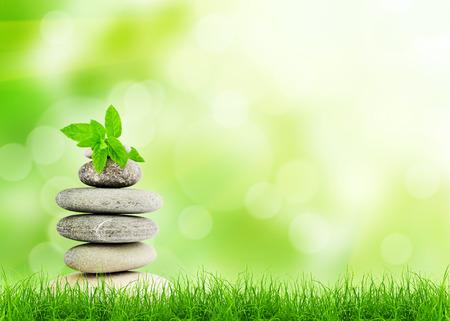 Foto de Green grass with stones, natural background with selective focus. spa concept - Imagen libre de derechos