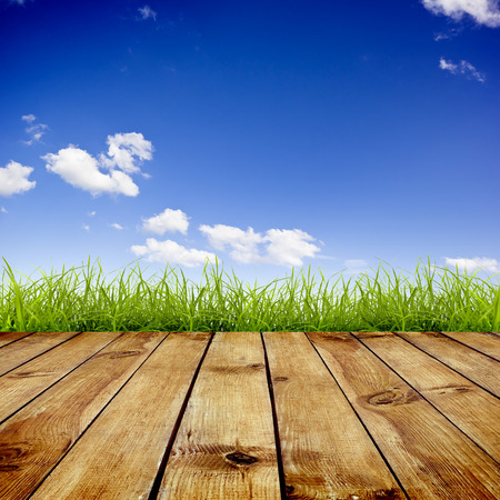 Photo pour Fresh spring green grass with blue sky and wood floor background - image libre de droit