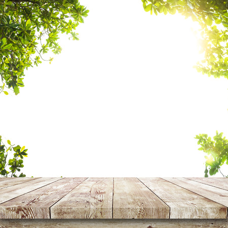 Foto de Fresh spring green leaves with wood table over white. Natural background - Imagen libre de derechos