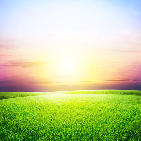 Foto de Green Field and Beautiful Sunset - Imagen libre de derechos