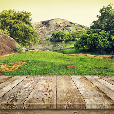 Photo for Green grass and trees. Beauty nature background. - Royalty Free Image