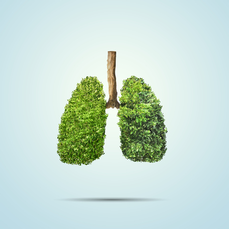 Foto de Green leaves shaped in human lungs. Conceptual image - Imagen libre de derechos