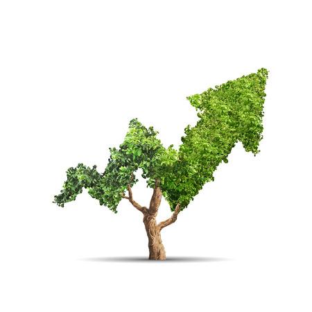 Foto de Tree grows up in arrow shape over white background. Concept business image - Imagen libre de derechos