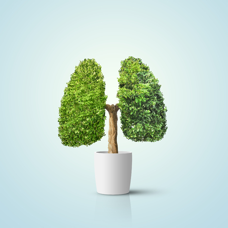Foto de Green tree shaped in human lungs. Conceptual image - Imagen libre de derechos