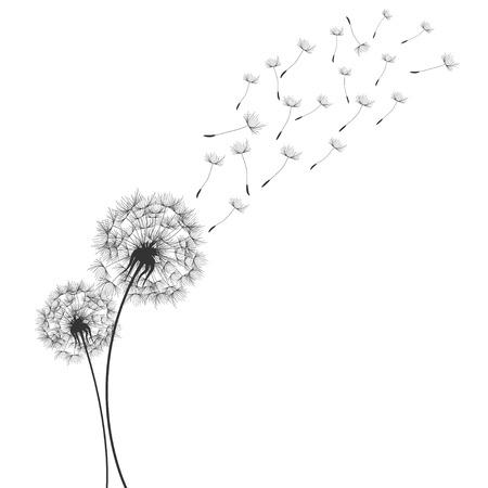 Illustration pour Dandelions  in Wind - image libre de droit