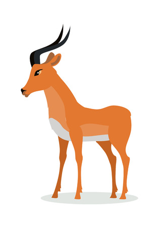 Illustration pour Antelope impala cartoon character. Beautiful impala flat vector isolated on white. African fauna. African antelope icon. Wild animal illustration for zoo ad, nature concept, children book illustrating - image libre de droit