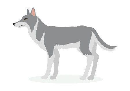 Illustration for Wolf Cartoon Vector Illustration in Flat Design - Royalty Free Image