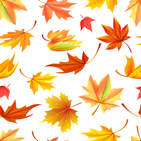 Illustration pour Seamless pattern with autumn yellow leaves, aging process, changing of leaf concept. Vector illustration with fallen orange maple in realistic design - image libre de droit