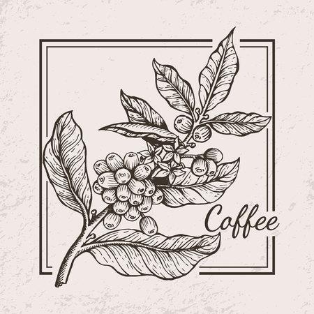 Ilustración de Coffee Berries Twig Icon Vector Illustration - Imagen libre de derechos