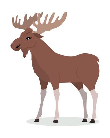 Illustration for Moose Male Vector Illustration in Flat Design - Royalty Free Image