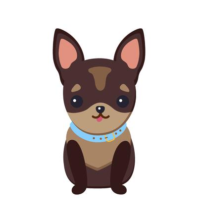 Illustrazione per Chihuahua Puppy with Collar Vector Illustration - Immagini Royalty Free