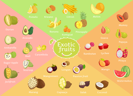 Illustration for Exotic Fruits Collection Color Vector Illustration - Royalty Free Image