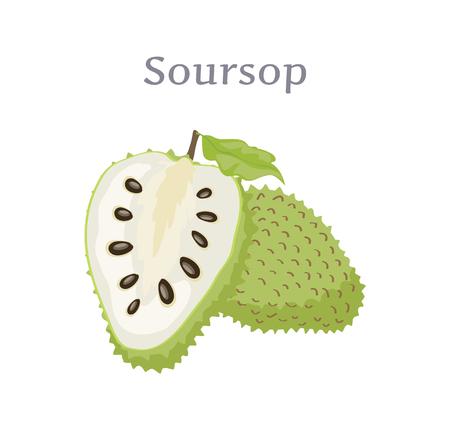 Foto für Soursop Whole and Cut Fruit Edible Plant Vector - Lizenzfreies Bild