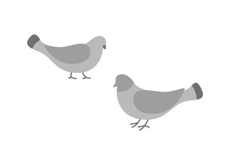 Ilustración de Pigeon birds, animals eating and walking on ground vector. - Imagen libre de derechos