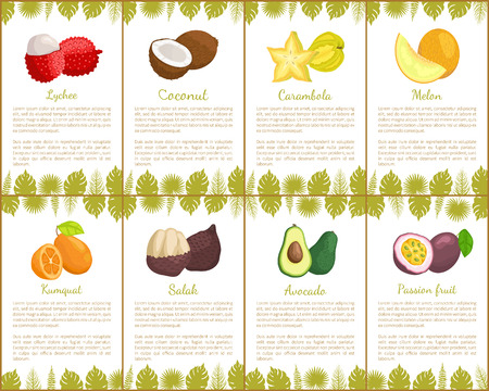Ilustración de Lychee coconut and carambola tropical exotic fruits vector. Kumquat and salak, avocado and melon, organic products healthy assortment poster with text - Imagen libre de derechos