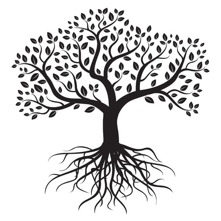 Ilustración de Vector tree with roots and leafs. - Imagen libre de derechos